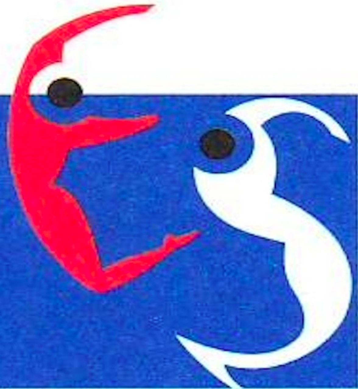 logo_cnes_720-1280-OK